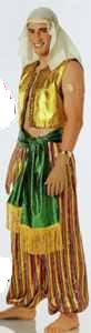 aladdin roleplaying halloween costume men man