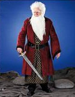 balin son of fundin the hobbit roleplaying costume