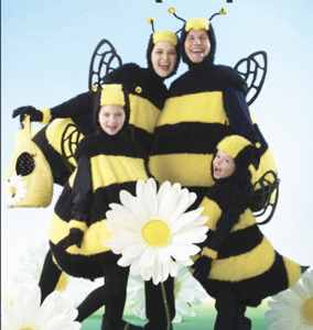 killer bees roleplaying fantasy costume