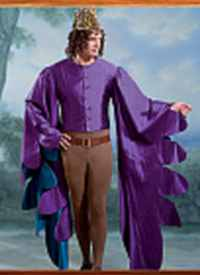 mens medieval courtier historical roleplaying costume